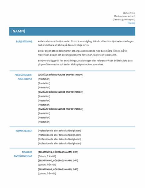 Funktionellt CV (enkel design)
