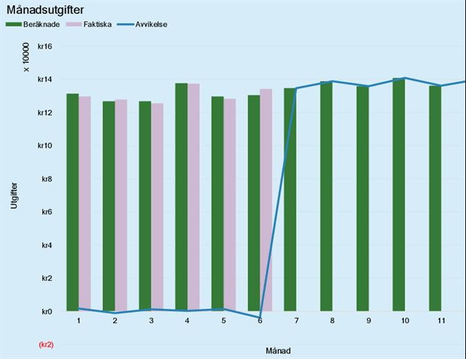 Utgiftsbudget för företag