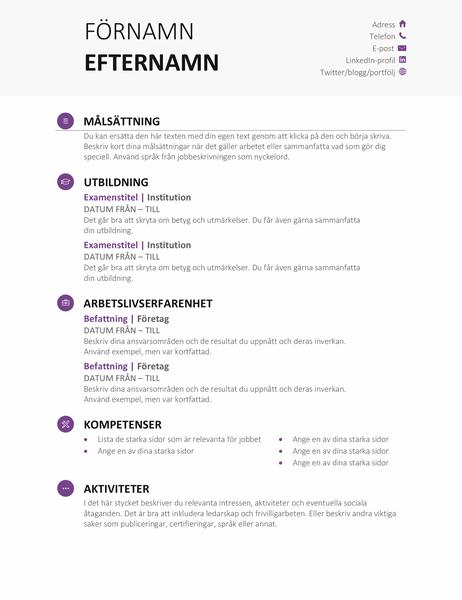 Meritförteckning student (modern design)