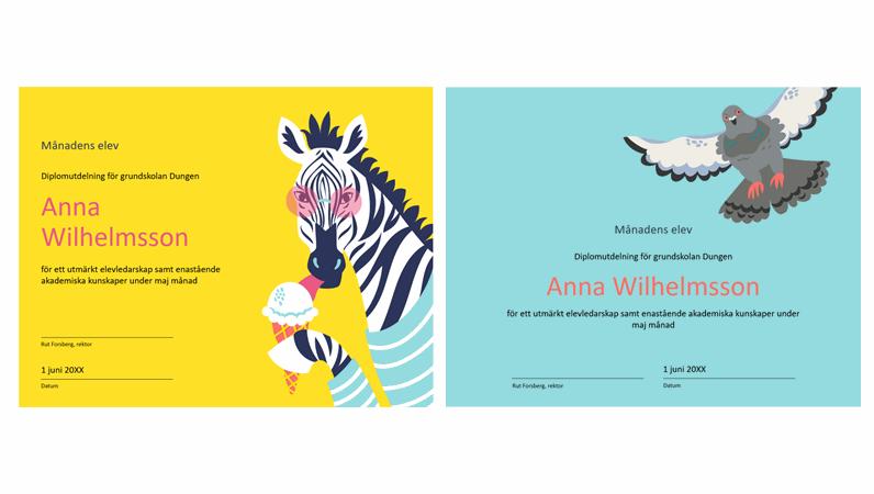 Färgblock djur studentcertifikat