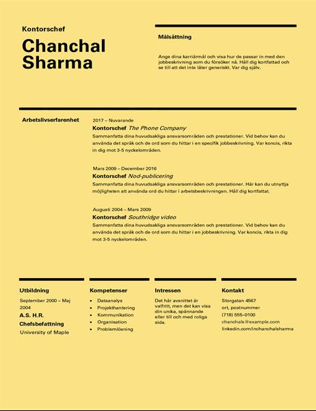 CV med schweizisk design