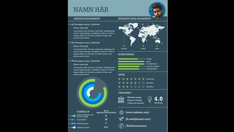 Internationell CV med informationsgrafik