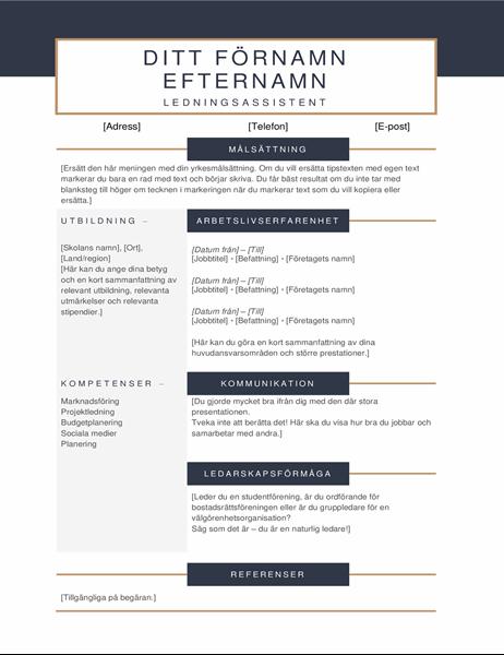 Minimalistiskt CV