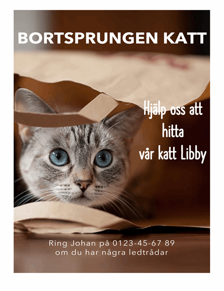 Informationsblad om bortsprungen katt