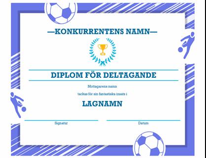 Utmärkelsecertifikat för fyra sportgrenar