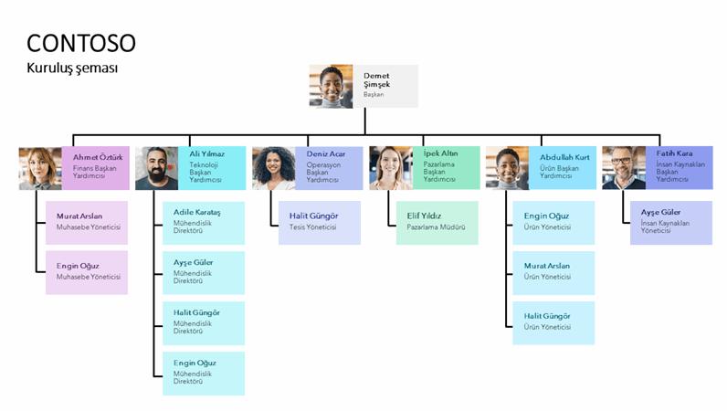 Minimal kuruluş şeması