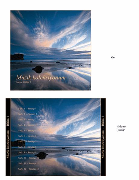 Müzik koleksiyonum CD'si kutu ilanı