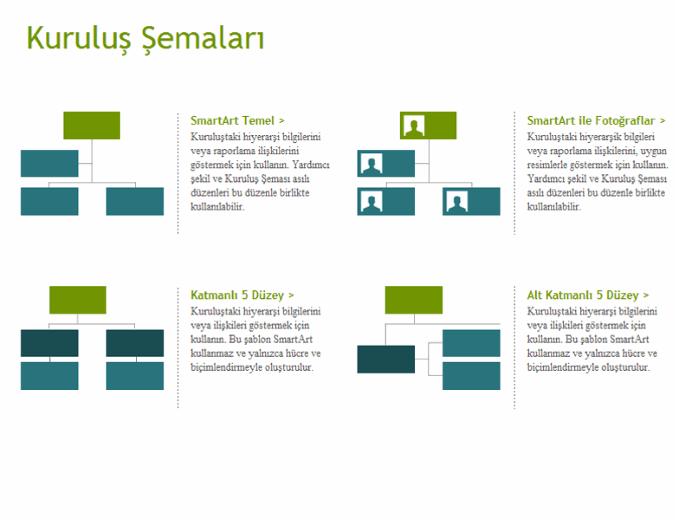 Kuruluş şemaları (görsel)