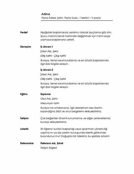 Kronolojik özgeçmiş (Minimalist tasarım)