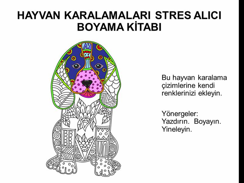 Hayvan karalamaları stres atıcı boyama kitabı