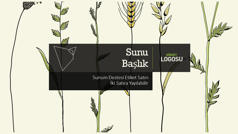 Sunum destesi