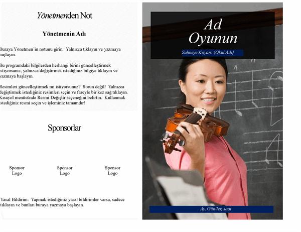 Okul performansı programı