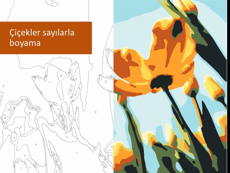 Çiçekler sayılarla boyama