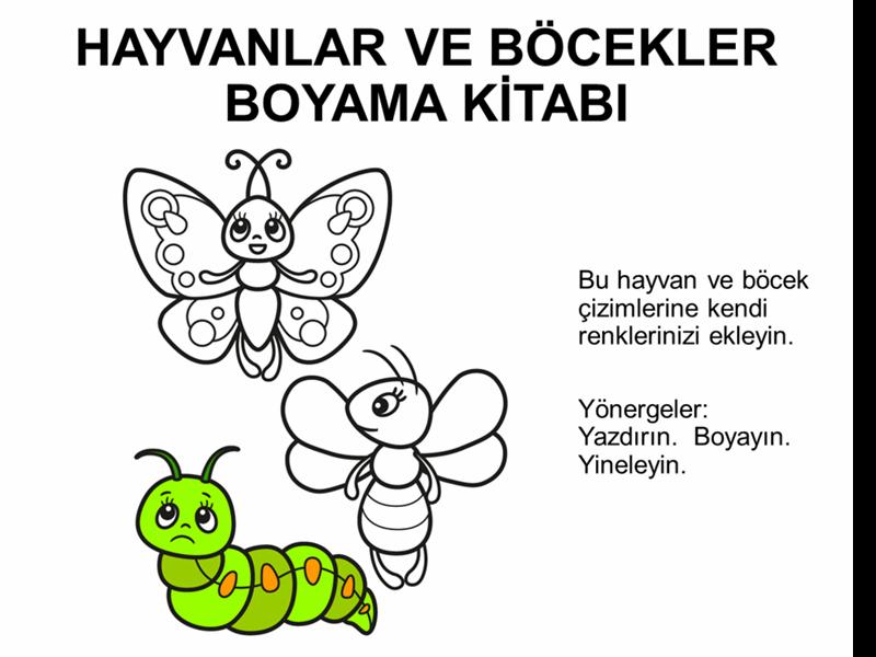 Hayvanlar ve böcekler boyama kitabı