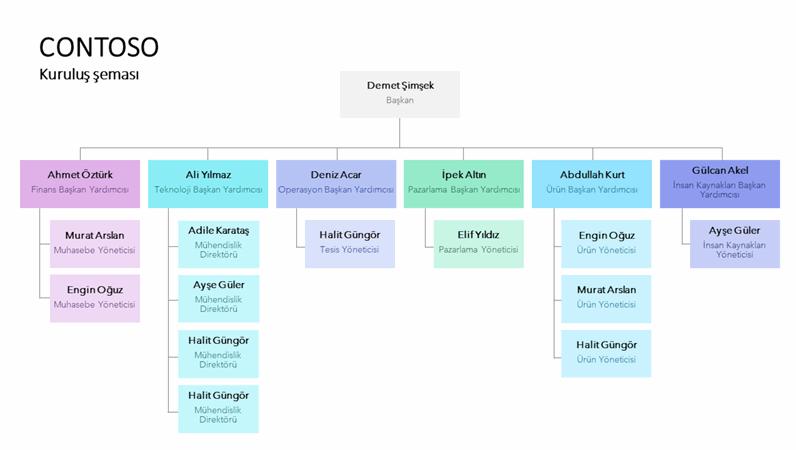 Renk kodlu kuruluş şeması