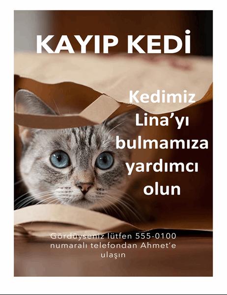 Kayıp kedi ilanı