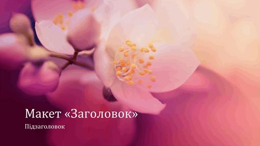 """Презентація у стилі """"Вишневий цвіт"""" (широкоформатна)"""