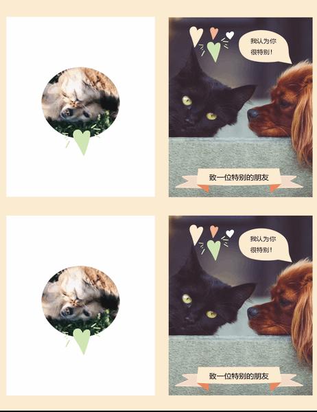 小猫小狗日常卡