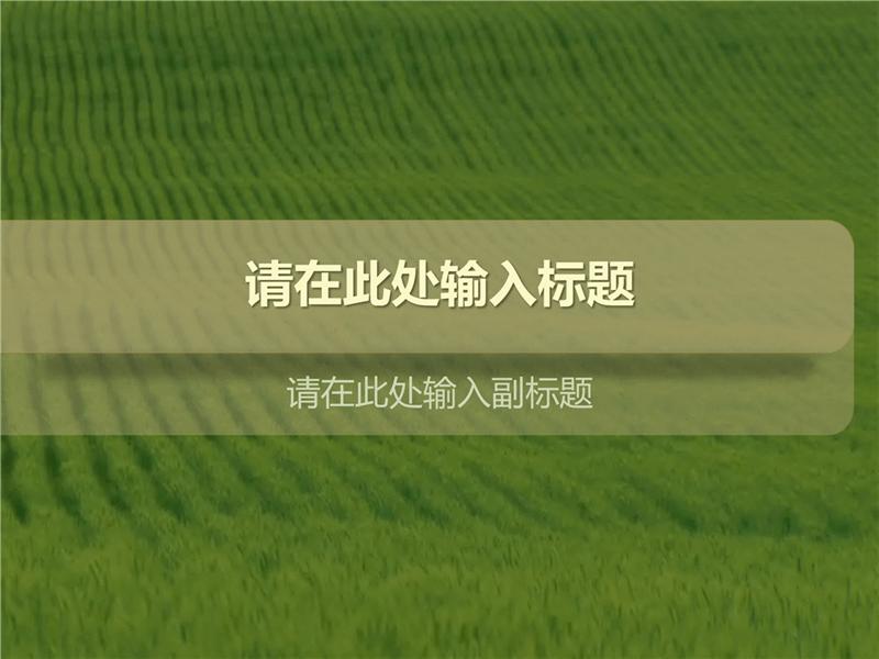 草原(带视频)