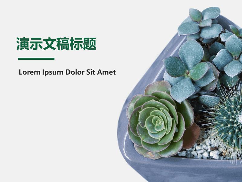 植物设计幻灯片