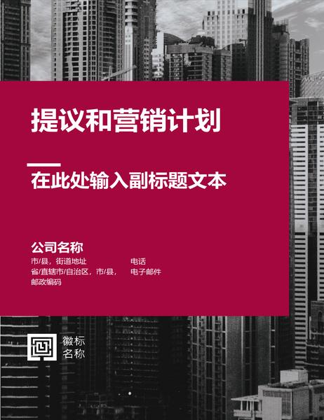 商业报告(专业设计)