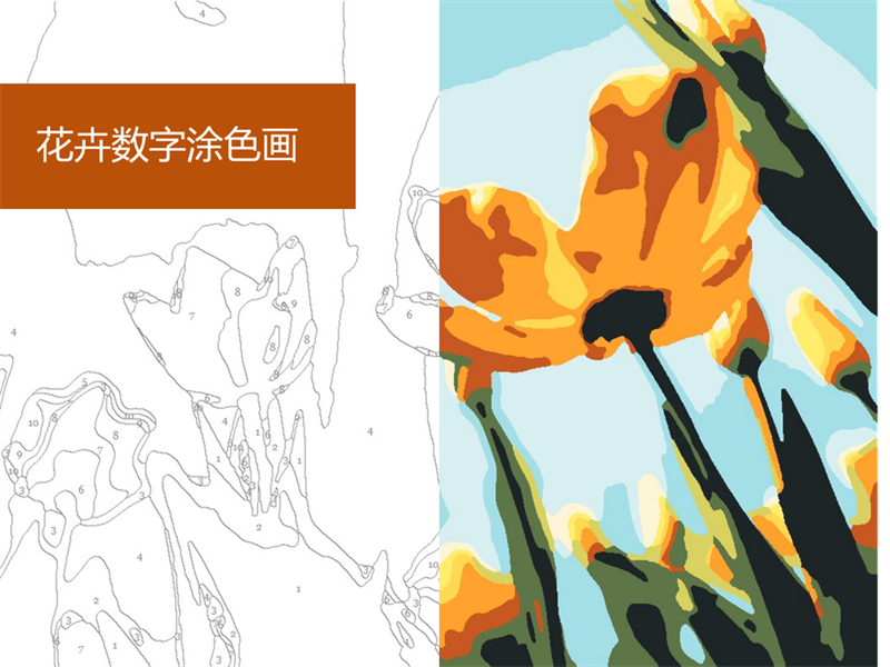 花卉数字涂色画