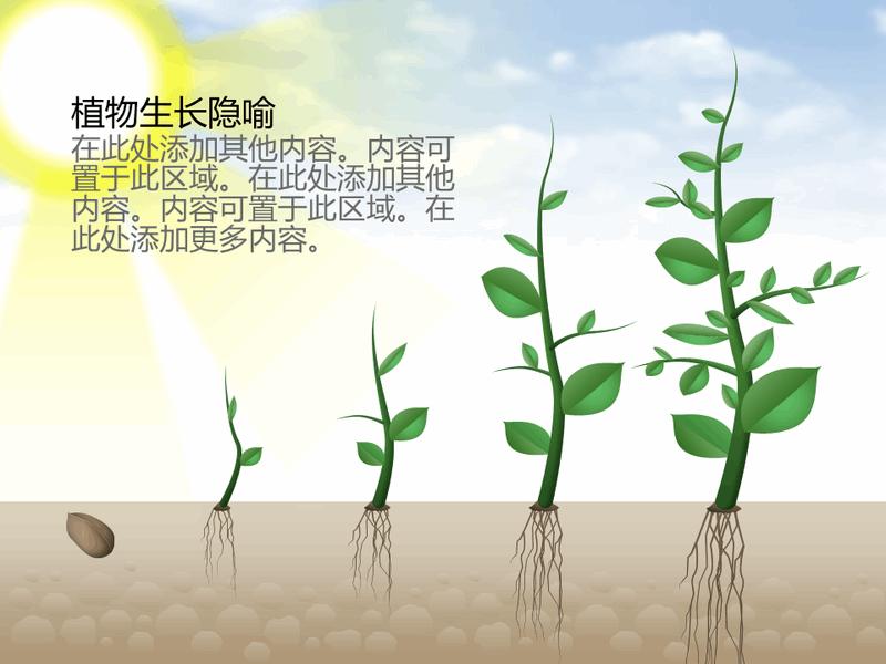 植物生长图形