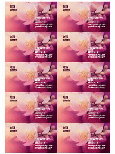 名片(花朵照片)
