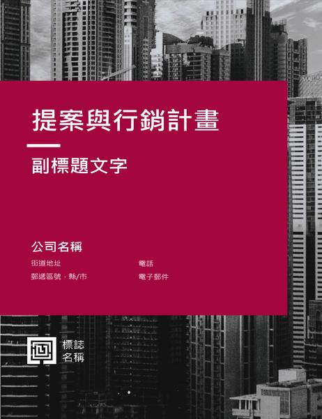 業務報告 (專業設計)