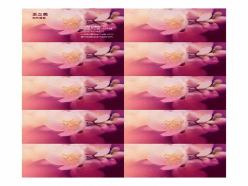 名片 (花朵相片)