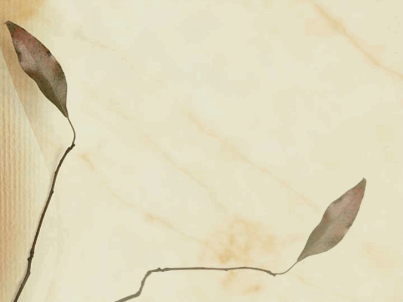 乾燥葉片設計範本