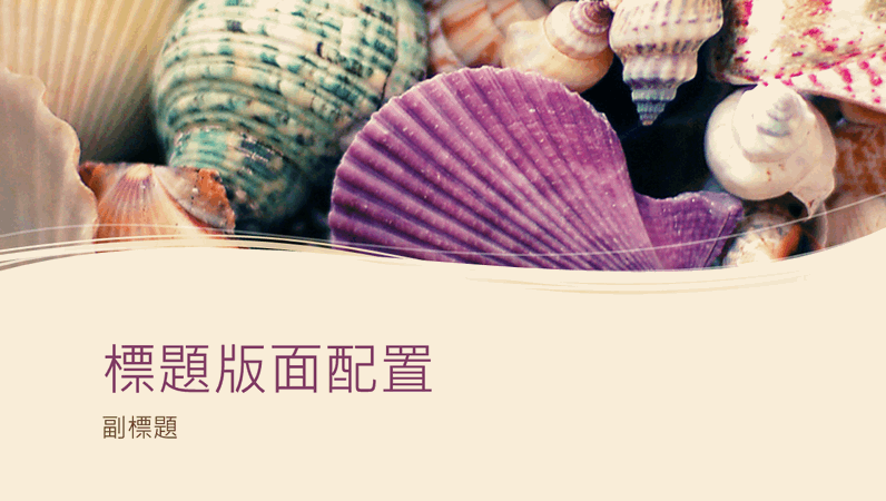 彩色貝殼收藏