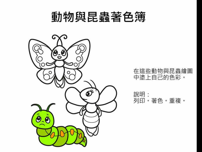 動物與昆蟲著色簿
